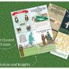 FLIPBOOK: The Nativity