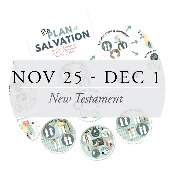Nov 25 - Dec 1