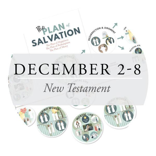 December 2-8